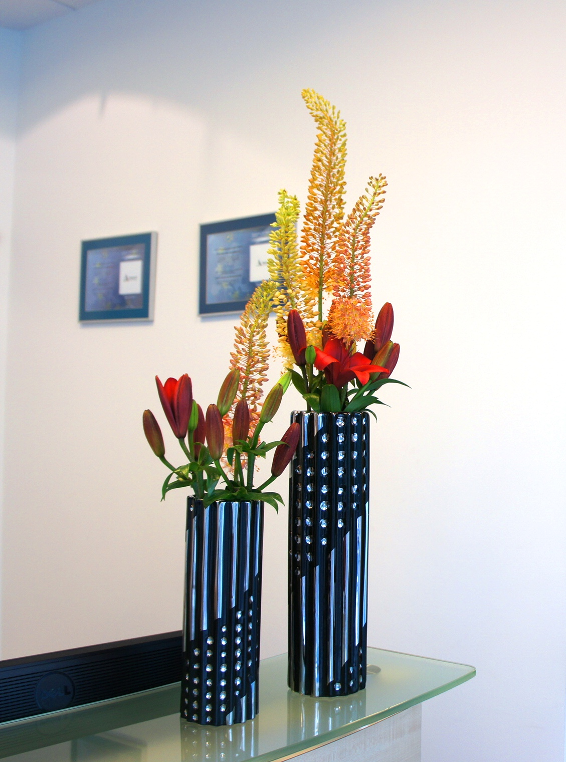pustynniki w dekoracji recepcji